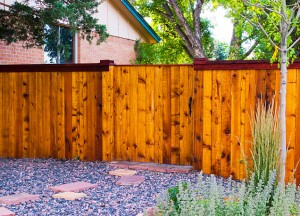 Custom Cedar Privacy Fence with Sealer