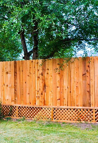 fence with lattice and pickets