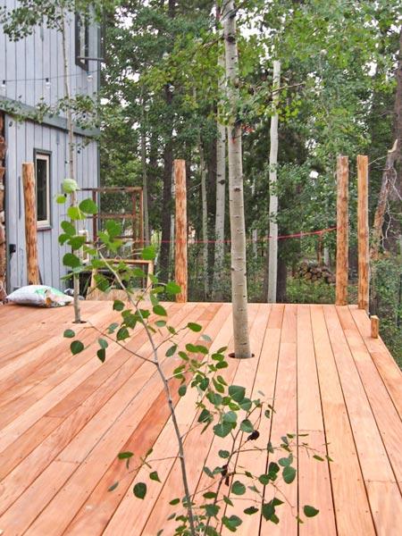 deck with aspen trees poking through